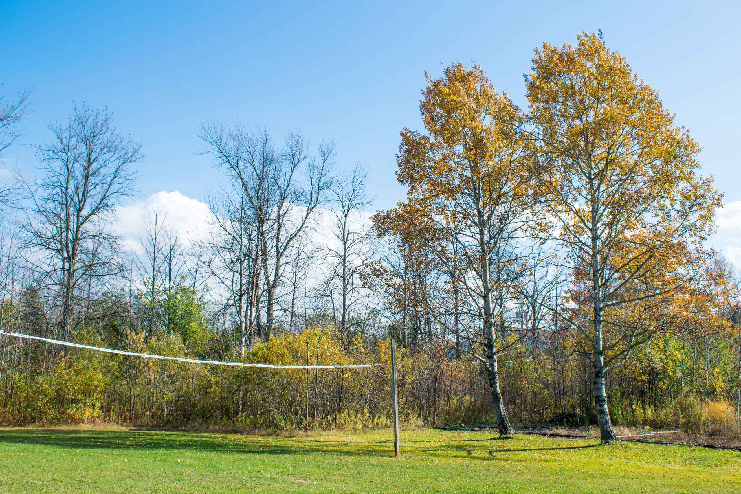 Volleyball Activities